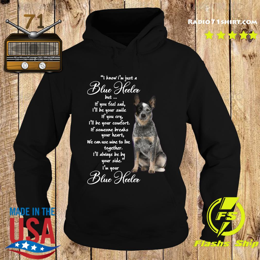 I Know I'm Just A Blue Heeler But If You Feel Sad Shirt Hoodie