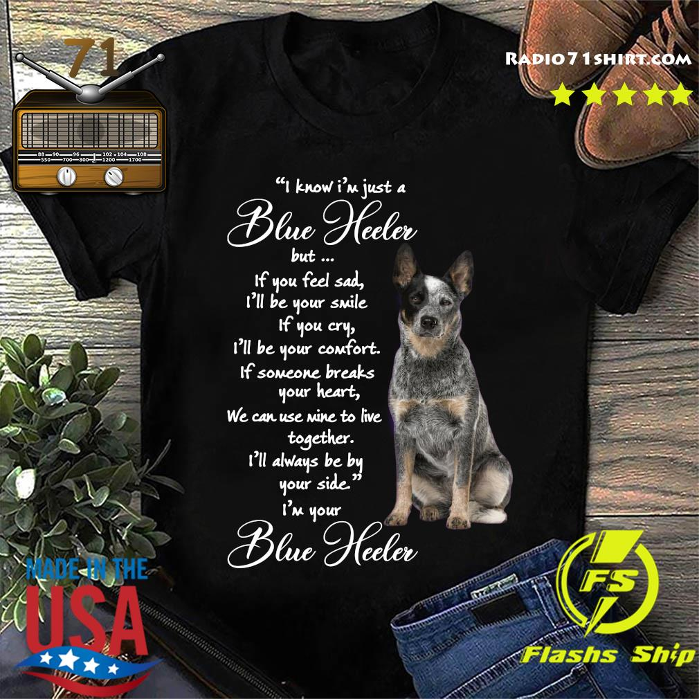 I Know I'm Just A Blue Heeler But If You Feel Sad Shirt
