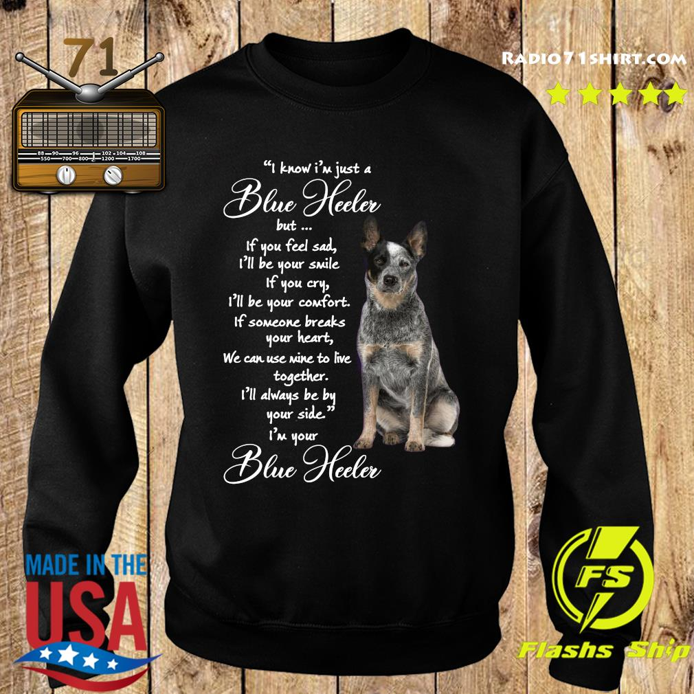I Know I'm Just A Blue Heeler But If You Feel Sad Shirt Sweater