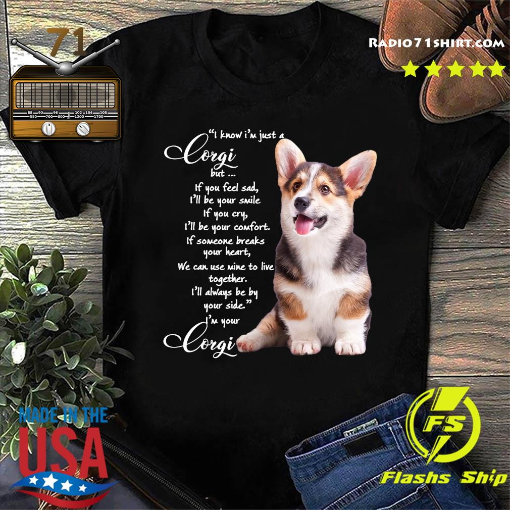 I Know I'm Just A Corgi But If You Feel Sad Shirt