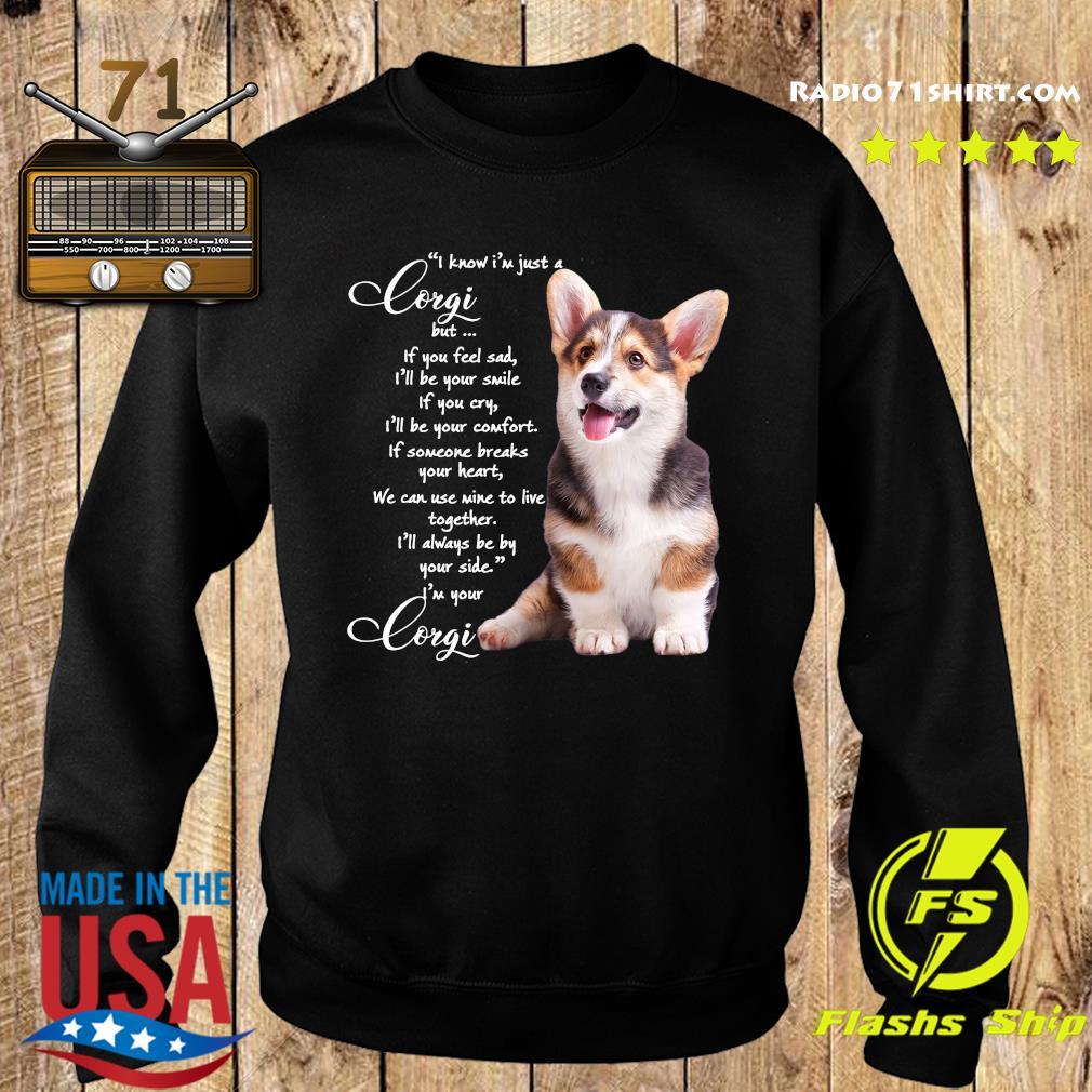 I Know I'm Just A Corgi But If You Feel Sad Shirt Sweater