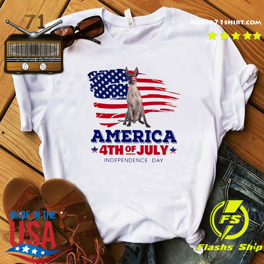 Xoloitzcuintli America 4th Of July Independence Day Shirt